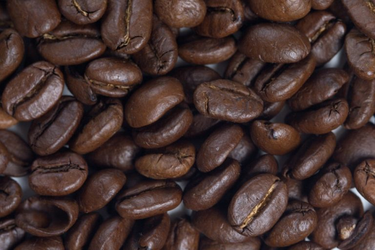 Coffee – Bean Growing